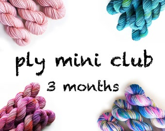 PLY mini club / hand dyed yarn / mini skein club / 3 month membership / customizable / gift yourself / pancake and lulu yarn of the month