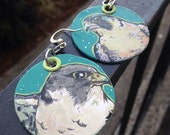 Finnegan the Peregrine Falcon - Hand-Painted Disc bird earrings Portland Audubon Society