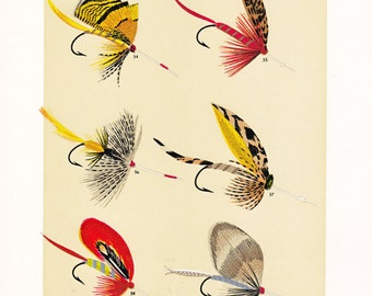 fly fishing print from an 1892 book, printable digital download no. 953