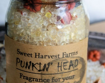 Punkin' Head - Aroma Beads/Potpouri