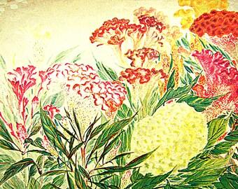 Japanese Vintage Print - Flower Print - Vintage Magazine Insert - Magazine Cut Out - Japanese Print - Magazine Page - Flower Print