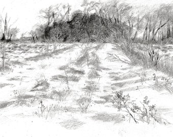 Winter Field, pencil, graphite black white sketch drawing, 24 x 20 cm