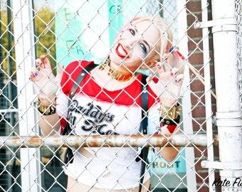 "Harley Quinn Fence 8""x10"" print"