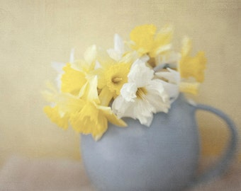 Daffodil Still Life Photography, Floral Art Print, Cottage Chic Decor,  Floral Wall Art, Flower Photography, Yellow Blue Decor