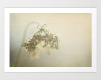flower photo ethereal  beige green romantic-Touched By The Light fine art photograph- pretty wall art- neutral home decor