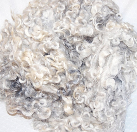 Cotswold Sheep Wool Curls Locks for Spinning Felting and Fiber Art in shades of Silver Gray 4 oz.