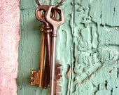 "Vintage Keys Photograph / Cottage Chic / Mint Pink / Old Wooden Door Print / France Travel  8x10 16x20 print ""Keys to the Winery"""