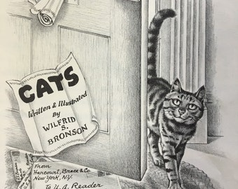 Cats by Wilfrid Bronson 1950 YA Book Great Illustrations