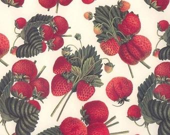 Red Strawberries Strawberry Print Italian Paper ~ Tassotti Italy IPT595