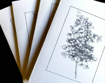Hydrangea Note Cards Set of 4, Blank Card Set, Original Art Hydrangea Art Note Cards, Art from Original Drawing Cards, Floral Note Cards