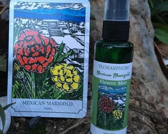 Mexican Marigold (Tagetes evecta) VITALITY Florasphere Mist
