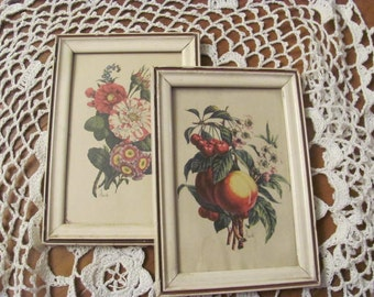 Botanical Print Two, Pair Benoit Chirad Prints in White Picture Frames