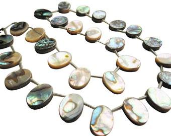 Abalone Beads, Abalone Briolettes, Paua Shell Beads, Oval Shaped Drops, 10.5mm x 14mm, SKU 1470