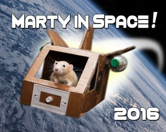 RAT Calendar for 2016 - Adorable rats in clothes and having adventures!