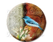 "BIG SALE - Pocket Mirror, Magnet or Pinback Button - Wedding Favors, Party themes - 2.25""- Pretty Blue Bird MR103"