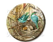 """50% OFF - Pocket Mirror, Magnet or Pinback Button - Wedding Favors, Party themes - 2.25""""- Blue Teal Birds With Golden Egg MR113"""