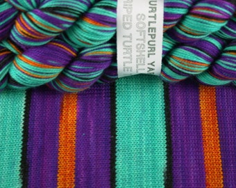 The Artist - Hand-Dyed Self-Striping MCN Sock Yarn
