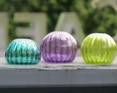 Mini Urchins, Set of 3, 2...