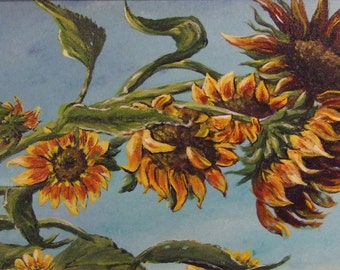 Sunflowers in September