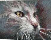 original art drawing aceo card cat in light