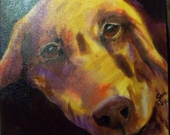 original art acrylic painting golden retriever 12x12 painting