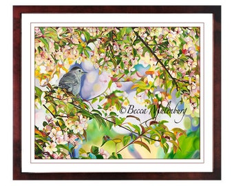 Gray Catbird S/N LE PRINT bird art wildlife crabapple tree blossoms