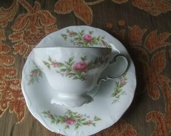 Johann Haviland Moss Rose Pattern Teacup & Saucer Set, Bavaria Germany, Footed, Embossed, Floral Design to Both Interior and Exterior Bowl