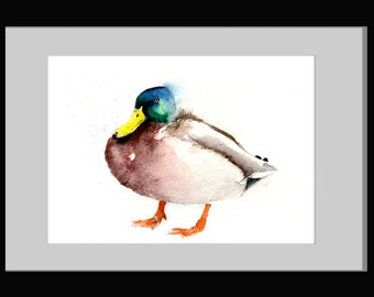 LIMITED edition print 0f painting mallard DUCK (ref:2391) wildlife, bird art, home office decor, gift idea, wall art.  hand signed