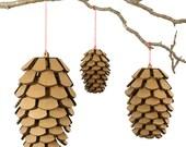 Cardboard Pine Cone Variety Set