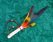 Macaw Dreams Feather Smudge Fan