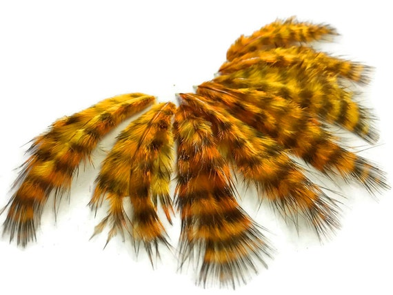 Fluffy Feathers, 1 Dozen - GOLD Grizzly Rooster fluff Small Feathers : 848