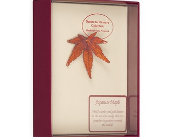 Real Japanese Maple Leaf Dipped In Iridescent Copper Barpin Brooches - Real Dipped Leaves