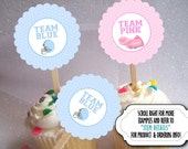 12 Cupcake Picks, Cupcake Topper Decorations, Baby Gender Reveal Party, Baby Shower, Football Helmet, Pink Pom Poms, Cheerleader Megaphone