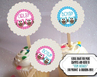 12 Cupcake Picks, Cupcake Topper Decorations, For TWINS, Baby Gender Reveal Party, Baby Shower, Twin Baby Pink & Blue Owls