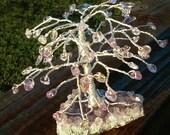 "Ametrine on Amethyst Cluster Gemstone Tree, ""Spirituality and Meditation"", Reiki Energy Charged"