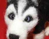 Siberian Husky Custom Order For  buyestes Handcrafted Soft Sculpture