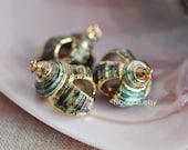 10pcs Natural Shell Charm Pendants Gold Plated (V1243)