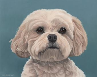 Custom Pet Portrait - oil, 16x20