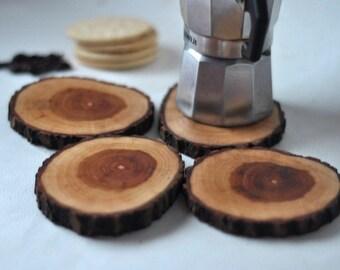 tree branch coasters • Oak wood Coasters • set of  4