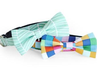 New Color! Pet Cat Dog Bow tie, Collar, Leash, girl dog bow tie collar, Mint dog collar, Pet wedding, Mint Herringbone, Happy Rainbow