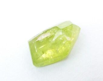 Garnet Cabochon Rose Cut. Large Natural Grossular Green Garnet Tavernier Cut Geometric Shape. 1 pc. 10 cts. 11x18.5x6 mm (GA902)