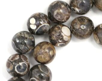 Turritella Agate Beads - 10mm Round