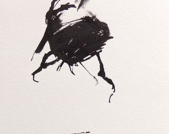Fly Ink Drawing