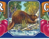 Beaver Brand Cherries Vintage Crate Label, C1980s