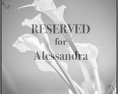 RESERVED for Alessandra
