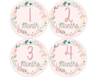 Monthly Baby Stickers, Girls First Year Photo Props, Baby Month Stickers, Baby Announcement, Monthly Photos, Baby Gift, Pink Floral (G246)