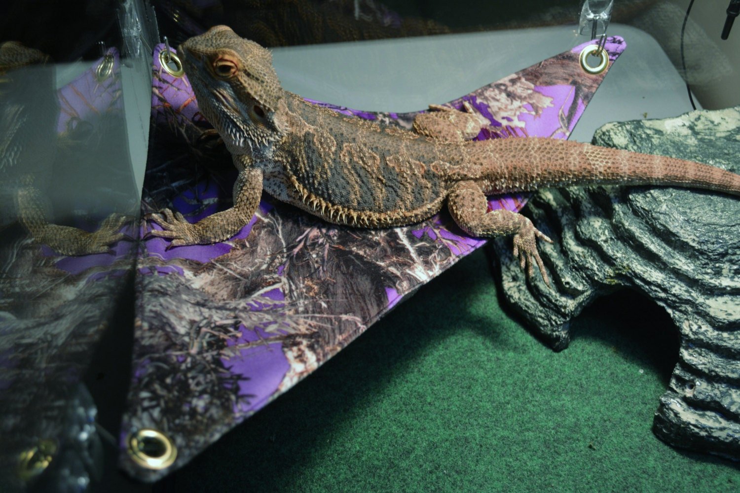 Bearded dragon bedding 28 images bearded dragon bed by for Bedroom key dragon age origins