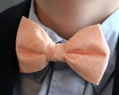 Bow Tie in Peach Crosshatch Plaid - clip on - ring bearer attire, groomsmen accessories or gifts