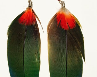 Beautiful Green Parrot Feather Earrings with Huayruro Seed