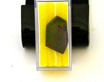"""28 x 16 mm Ammolite free form cabochon  """"A Grade Color*  without doubt"""
